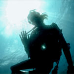 5 Reasons to Scuba Dive